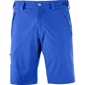 Salomon M's Wayfarer Shorts Regular surf the web